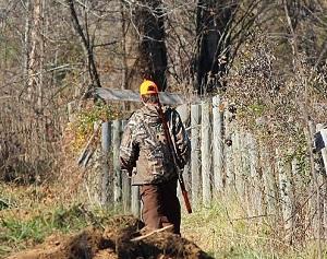 Ohio's Deer Gun Season Starts Nov 30th, Bonus Weekend Available